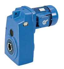 gear motors-1
